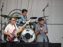 Leonard Cohen om nieuw album in 2014 vrij te geven Stock Foto's