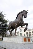 Leonardo da vinci horse milan,milano,expo2015 Stock Image