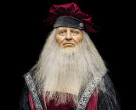 Leonardo da Vinci Royalty Free Stock Photography