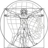 Leonardo Da Vinci mężczyzna Zdjęcia Stock
