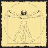 Leonardo Da Vinci`s draw. Vector illustration of Vitruvian man based on Leonardo Da Vinci`s draw Royalty Free Stock Photos