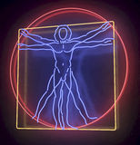 Leonardo Da Vinci's Vitruvian Man in a Blue, Red and yellow Neon Tube Finish, Homo Quadratus, 3d rendering on black background. Reflecting, glossy background Royalty Free Stock Photo