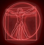 Leonardo Da Vinci's Vitruvian Man in a Red Neon Tube, Homo Quadratus, 3d rendering on black background Stock Image