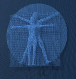 Leonardo Da Vinci Vetruvian Man, Homo Quadratus depicted in a grid of small blue cubes, voxels, digital style Stock Photography