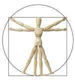 Leonardo Da Vinci Vitruvian Stockfotos