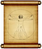 Leonardo da Vinci Vitruvian. A copy of the Leonardo da Vinci Virtruvian man on a old scroll of paper Stock Photos