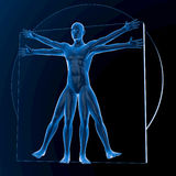 Leonardo da Vinci Vitruvian Man Imagen de archivo libre de regalías