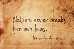 Leonardo de las leyes de la naturaleza Imagenes de archivo