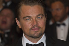 Leonardo DiCaprio royalty-vrije stock afbeeldingen