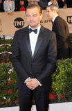 Leonardo DiCaprio Immagine Stock
