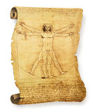 Leonardo's Vitruvian Man old parchment. Leonardo's Vitruvian Man on an old parchment document roll stock image