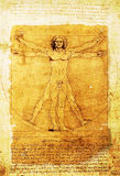 Leonardo's Vitruvian Man old parchment. Leonardo's Vitruvian Man on an old rugged parchment document stock photos