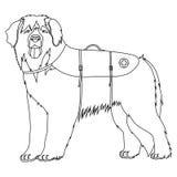 Leonberger lifesaver dog outline Royalty Free Stock Photography