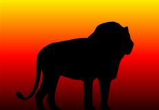 Leone royalty illustrazione gratis