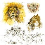 Leone Acquerello dell'illustrazione di orgoglio del leone illustrazione vettoriale