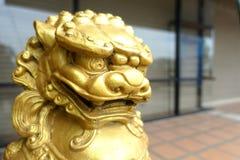 Leone cinese dell'oro fotografie stock libere da diritti