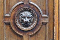 Leone della porta Immagini Stock