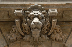 Leone di Dresda Immagine Stock