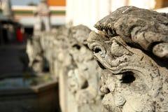 Leone di letteratura in tempio Immagine Stock
