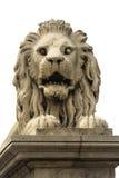 Leone di pietra di Budapest Fotografia Stock