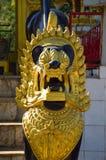Leone dorato nel tempio Fotografia Stock