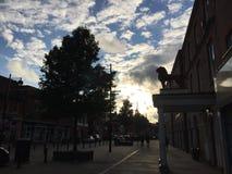 Leone ed il cielo Fotografie Stock