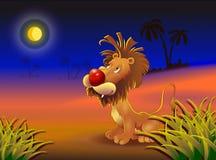 Leone felice sulla savanna Fotografia Stock