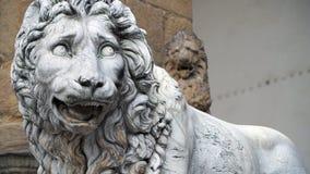 Leone a Firenze Fotografie Stock Libere da Diritti