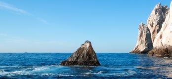 """Leone marino di California che riposa sul  di Point†del """"the o sul """"Pinnacle del  di End†delle terre di Los Arcos in Ca immagine stock"""