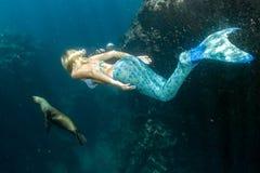 Leone marino e sirena subacquei fotografia stock libera da diritti
