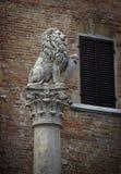 Leone a Montepulciano Fotografia Stock Libera da Diritti