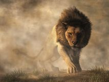 Leone in nebbia royalty illustrazione gratis