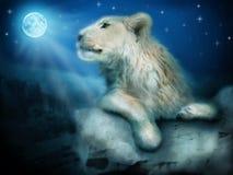 Leone nella notte Fotografia Stock Libera da Diritti