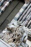 Leone scuro Fotografia Stock