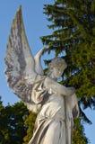 leones Cementerio de Lviv Imágenes de archivo libres de regalías