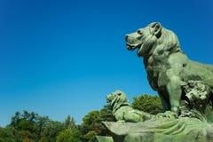 Leones de la charca, parque del retratamiento agradable, Madrid Foto de archivo libre de regalías