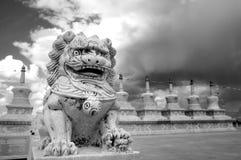 Leones de la piedra de China Fotos de archivo