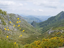Leonese mountain. View of the mountains in the province of leon, Spain Stock Photography