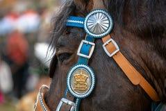 Leonhardi decorated big cold blooded horses Bad Toelz Germany. Bavaria royalty free stock images