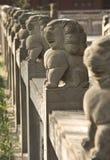 Leoni di pietra Immagini Stock