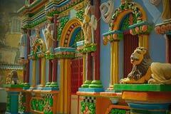 Leoni portoghesi decorativi in India fotografia stock libera da diritti