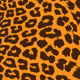 leopard γουνών πρότυπο Στοκ φωτογραφία με δικαίωμα ελεύθερης χρήσης
