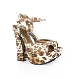 leopard προκλητικά παπούτσια τυπωμένων υλών Στοκ εικόνες με δικαίωμα ελεύθερης χρήσης
