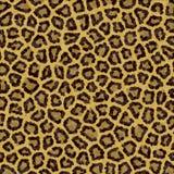 leopard σύσταση προτύπων Στοκ φωτογραφία με δικαίωμα ελεύθερης χρήσης
