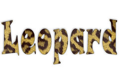 Leopard. Keyword: leopard. Written in characters with texture Royalty Free Stock Photos