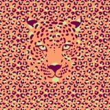 Leopard 1_1 Lizenzfreies Stockfoto
