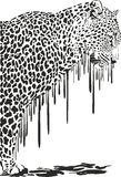 Leopard, abstract painting Stock Photography