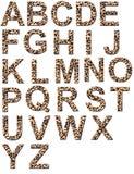 Leopard alphabet Stock Photos