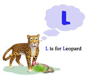 Leopard with alphabet Stock Image