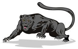 Leopard auf dem Prowl Lizenzfreies Stockfoto